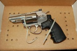 Adult and two juveniles accused of armed robbery with replica gun