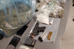 Driver and passenger both arrested with gun, drugs