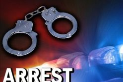 Residential brothel busted on McLellan Drive