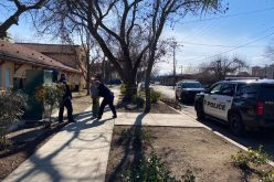 Woodland man arrested on suspicion of prowling