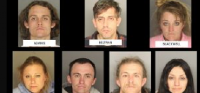 Seven Busted on Multiple Charges Released With No Bail