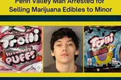 Man sells marijuana gummies to minor