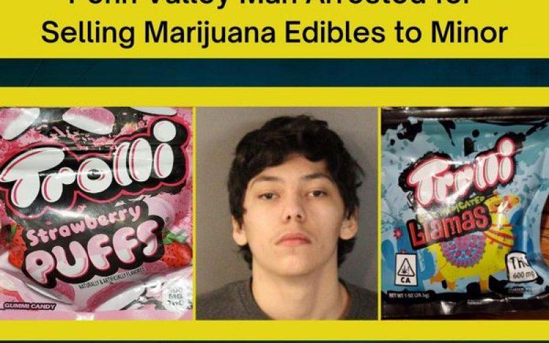 Man sells marijuana gummies to minor