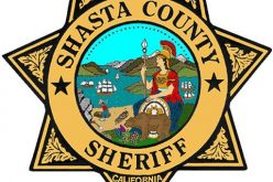 Man arrested after acting erratically, resisting