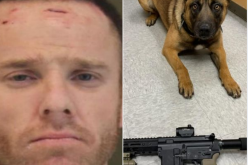Fleeing suspect on parole had assault rifle