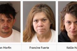 Multi-Pronged Bust – Trio of Identity Theft/Organized Retail Thieves & Meth Purveyors