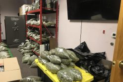 Six-Plus Million-Dollar Search-Warrant Seizure at Illegal Dispensary Reveals Massive Stash