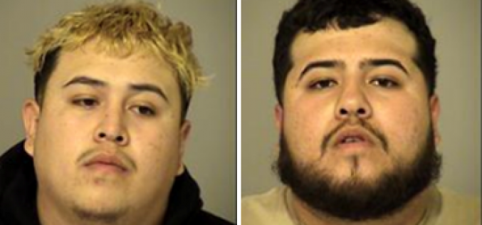 Meth-dealing Brothers Arrested