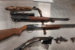 Firearms confiscated during gang enforcement operation