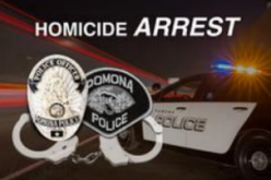 Update to Family Tragedy – Deadly Domestic Dispute Incident's Homicide Investigation