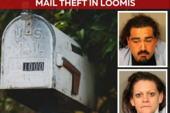 Pair with warrants arrested for multiple thefts
