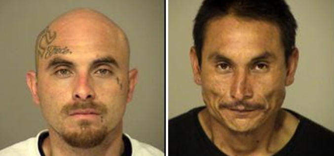 Catalytic Converter Crooks Caught