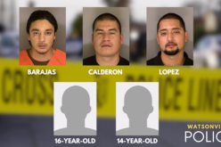Five gang members arrested in connection with attacks