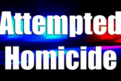 Attempted homicide suspect arrested