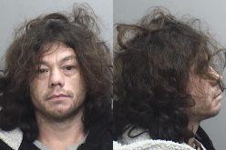 Felon with two arrest warrants, meth, and ammunition