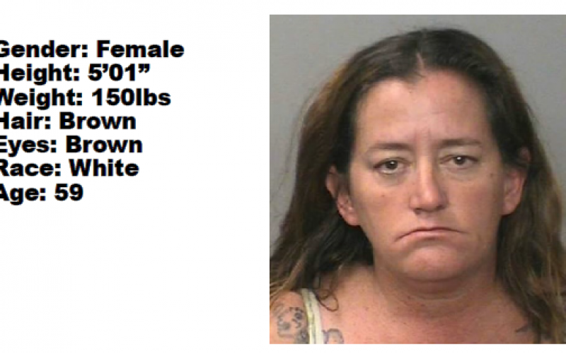Active warrant for woman wanted for drug sales