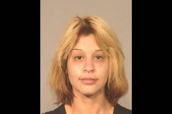 Woman allegedly used stolen identities to purchase auto insurance and a file fraudulent claim