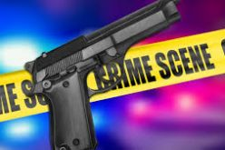 Man arrested for firing into residence