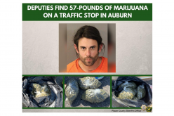Deputies reportedly find bags of weed, cash, pill bottle during suspected-DUI traffic stop