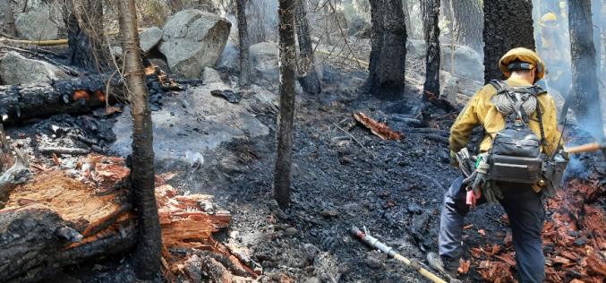 Woman admits to arson near Echo Summit
