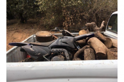 Tuolumne man arrested in connection to string of recent property thefts