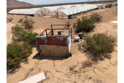 Kern County: Two arrested in connection to illegal cultivation of marijuana
