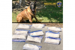 Riverside PD: K-9 Officer Link uncovers ten pounds of meth worth nearly $100K