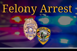 Man arrested for shooting into residence and vehicle
