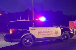 One arrested, one cited in traffic stop
