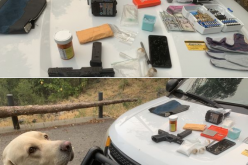 K9-Toby helps stop suspect with gun, rounds, tools and meth