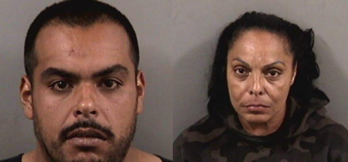 Mother and Son from Troubled Household Arrested for Drugs and Weapons