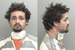 Man arrested in assault and vandalism incident