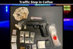 Traffic stop yields a store of various drugs