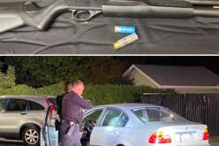 Angry DUI driver brandishes shotgun