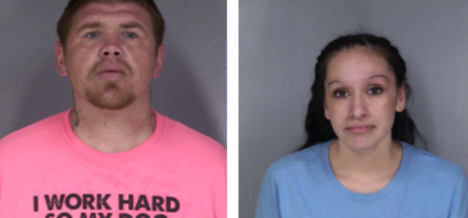 Two arrested during stolen vehicle investigation