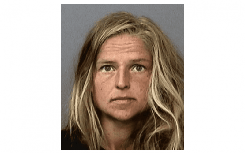 Mercury News: Palo Alto scientist pleads not guilty to setting Shasta fire that has claimed 41 homes