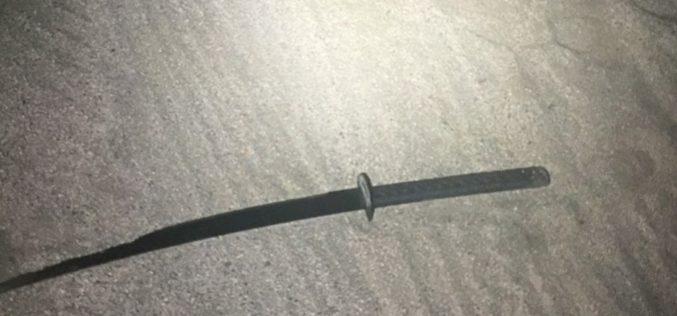 Assault with sword, rock, lands man in jail